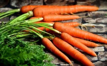 Obst oder Gemüse - frisch wie diese Möhren sollte es schon sein.