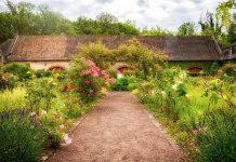 Ordnung halten im Kräutergarten