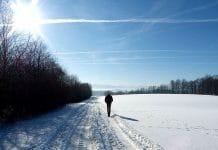 Sonne liefert uns Vitamin D auch im Winter.