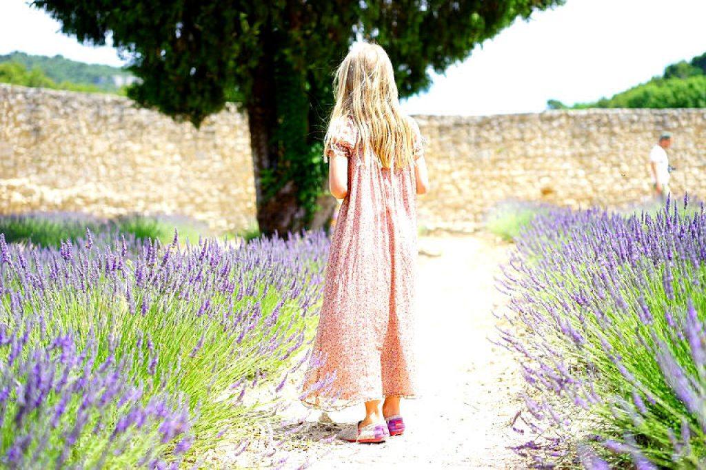Mädchen inmitten von Lavendel - Kraut oder kein Kraut?