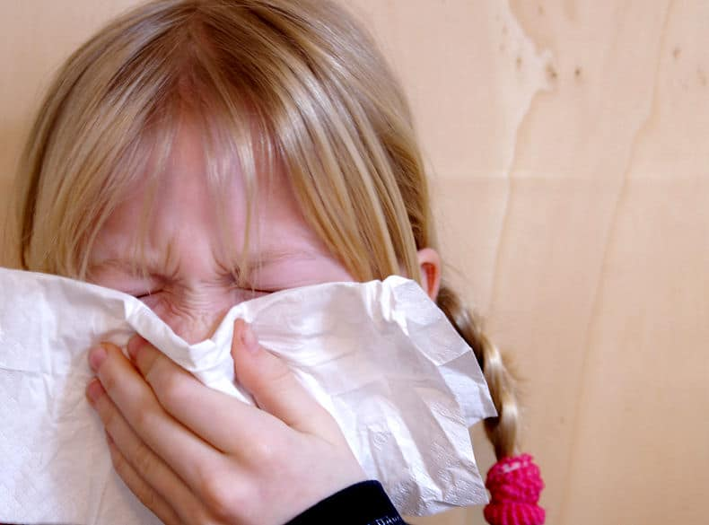 Eine Allergische Reaktion zeigt sich oft in plötzlichen Anfällen von Niesen