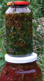 Johanniskraut Rotöl frisch angesetzt