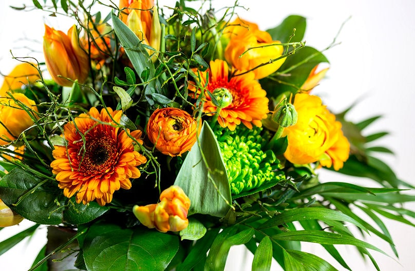 Blumen verschenken - diese hier passen für viele Anlässe