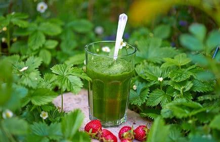 Grüne Smoothie Variationen: Leuchtend grüner Smoothie - rot mit Erdbeeren garniert