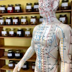 Akupunktur Punkte in der traditionellen chinesischen Medizin