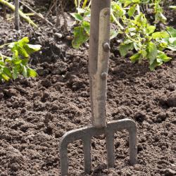Selbstversorger werden heißt viel Arbeit im Garten