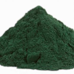 Spirulina - Blaubakterien - getrocknet und zu Pulver zermahlen