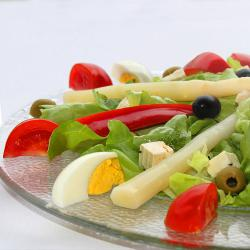 Vegetarierkost - leckeres Grünfutter für Vegetarier Veganer Frutarier