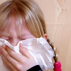 allergisch reagieren mit Schnupfen und Niesen