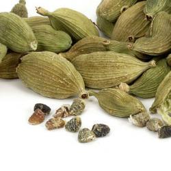 Kardamomkapseln und Samen